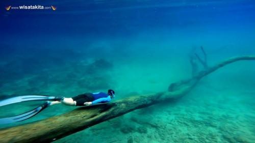 Kepulauan Derawan and Labuan Cermin with Whaleshark 07-10 Juni 2019