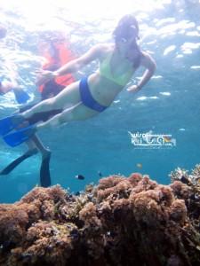Kepulauan Derawan Berau 28-31 Desember 2018