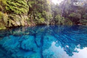 Kepulauan Derawan Berau 26-29 Desember 2019