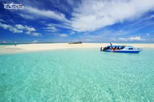 Kepulauan Derawan and Labuan Cermin with Whaleshark 09-12 Agustus 2019