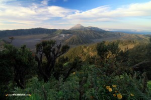Bromo Midnight Tour 13-14 Oktober 2018