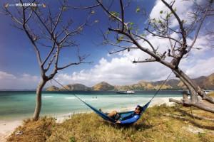 Sailing Komodo 3 Hari 2 Malam 30 Desember 2019-01  2019 Spesial Tahun Baru