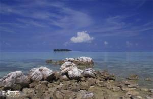 Karimunjawa Weekly Adventuring (Via Bahari Express) 01-03 Desember 2017 private 10 orang