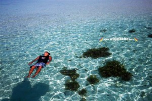 Karimunjawa Weekly Adventuring (Via Bahari Express) 08-10 April 2019