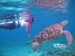 Kepulauan Derawan Berau 04-07 Juli 2016