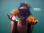 Discovery Derawan Islands 15-18 Mei 2014