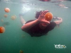 Kepulauan Derawan Berau 21-24 Agustus 2018