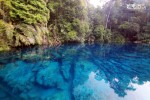 Kepulauan Derawan with Whaleshark 05-08 Mei 2016
