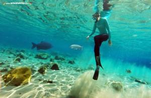 kegiatan snorkling di Umbul Ponggok Klaten
