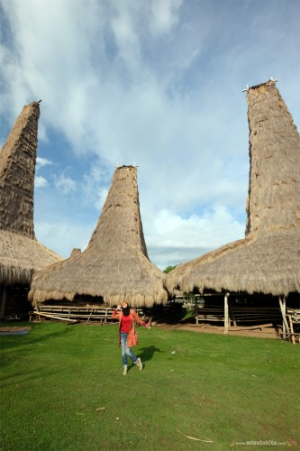 Wisata adat dan budaya di kampung Ratenggaro, Sumba