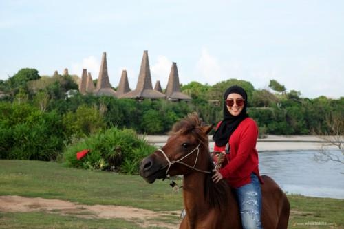 Kuda Sandelwood Sumba