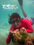 Karimunjawa Weekly Adventuring (Via KMP Siginjai) 22-24 April 2016