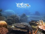 Karimunjawa Weekly Adventuring 22-25 September 2014