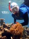 Karimunjawa Weekly Adventuring 25-27 Mei 2015 (Via Kapal Bahari Express)