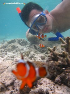 Karimunjawa Weekly Adventuring (Via Bahari Express) 26-28 Nopember 2018