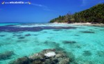 Karimunjawa Weekly Adventuring 01-04 September 2014