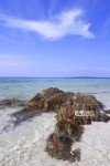 Karimunjawa Weekly Adventuring 08-11 September 2014