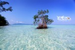 Karimunjawa Weekly Adventuring 27-29 April 2015