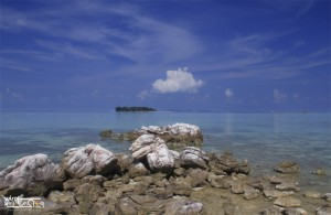 Karimunjawa Weekly Adventuring (Via Bahari Express) 01-03 Desember 2017