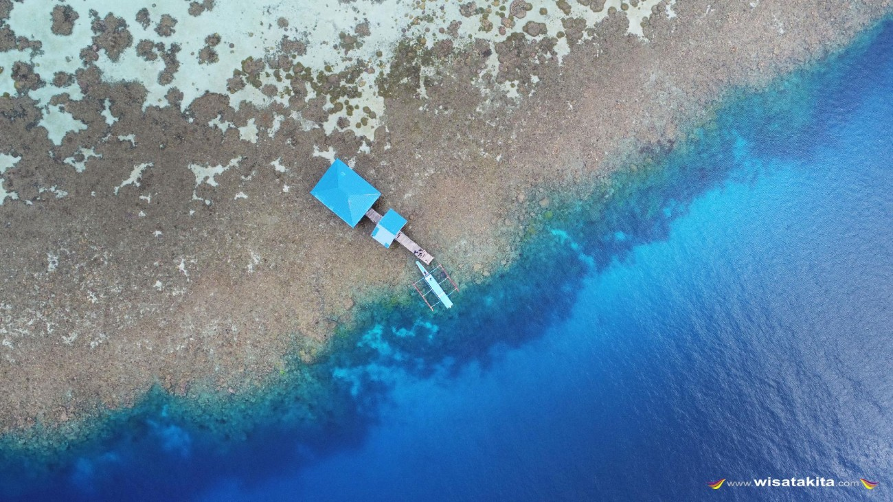 California Reef Togean
