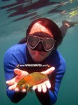 Karimunjawa Private Trip Bp. Asad 10-13 Mei 2014