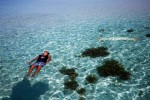 Karimunjawa Weekly Adventuring 18-21 Juli 2014