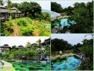 Swimmingpool Jiwa Quest Resort Karimunjawa