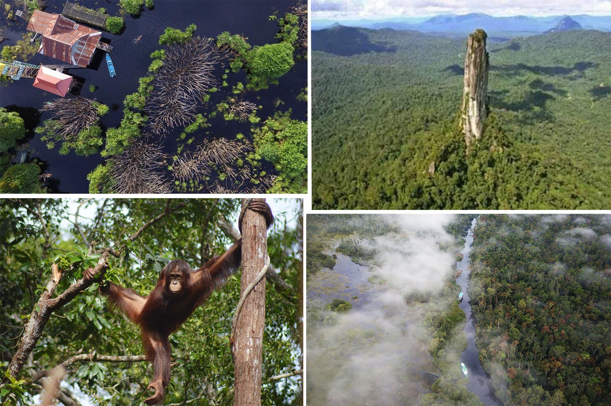 5 Destinasi Kalimantan Tengah Dimana Ibu Kotanya Di Gadang